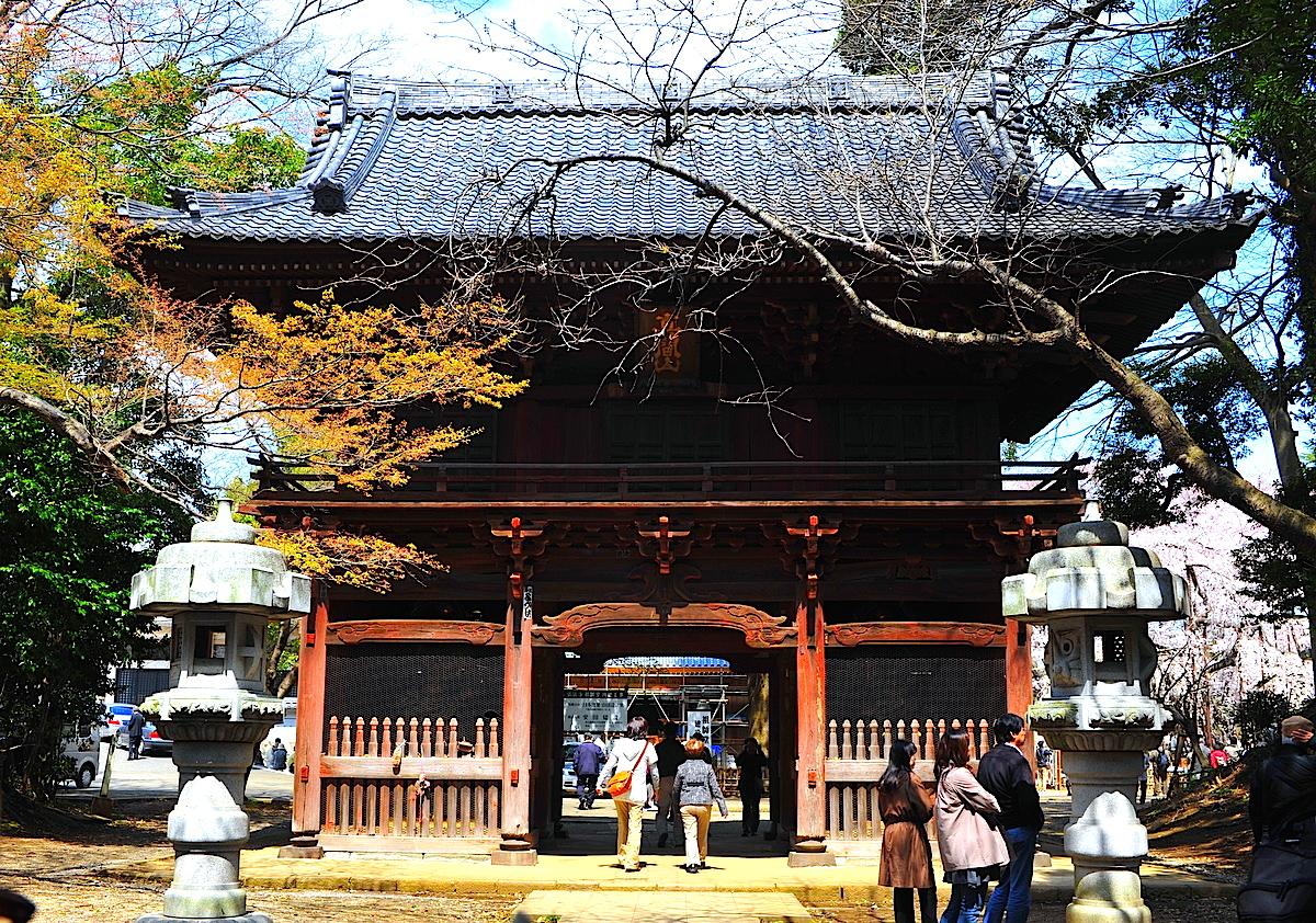 弘法寺の仁王門。この先に伏姫桜が