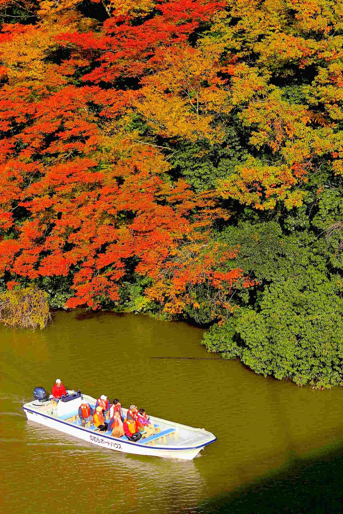 湖上からでしか観賞できないスポットで紅葉狩り!