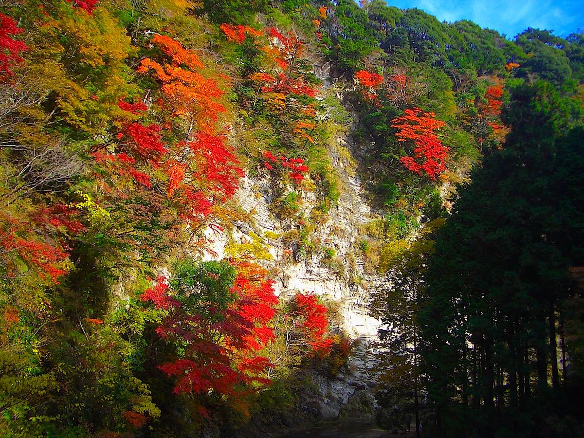 白岩の紅葉