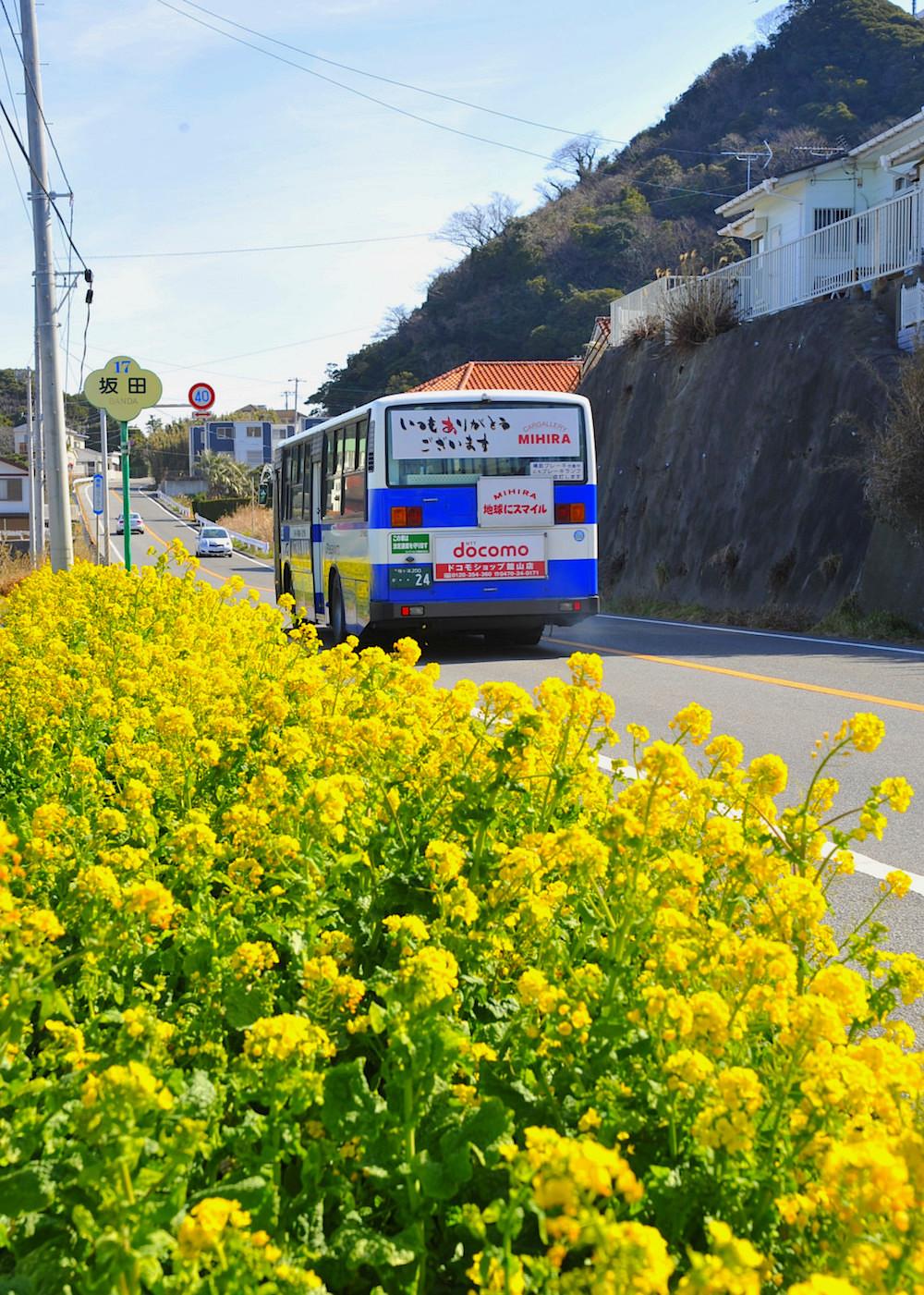 2月、3月の土休日にはJRバス『フラワー号』も運転