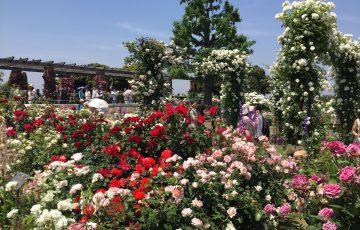 ガーデンネックレス横浜2018