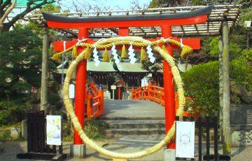 千葉神社『智の輪くぐり神事』