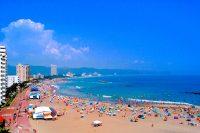 【海水浴】前原海水浴場(鴨川市)