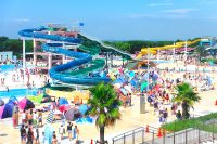 「稲毛海浜公園プール」オープン(千葉市)